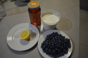 Blueberries, Lemon , Honey , Greek Youghurt (1)