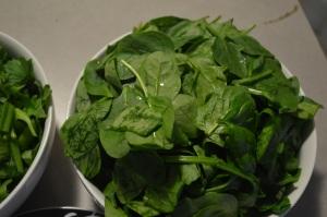 Celery Kiwi Spinach 004