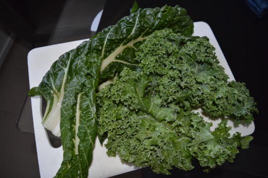 Silvertbeet + Kale Vege 003